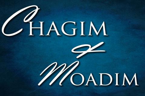 img_shuvu_non_credit_chagim