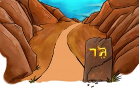 img_shuvu_non_credit_path_ger