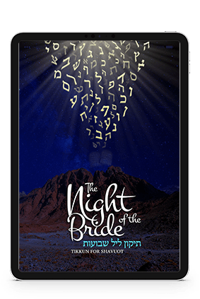 banner_night_of_the_bride_tablet_ENG