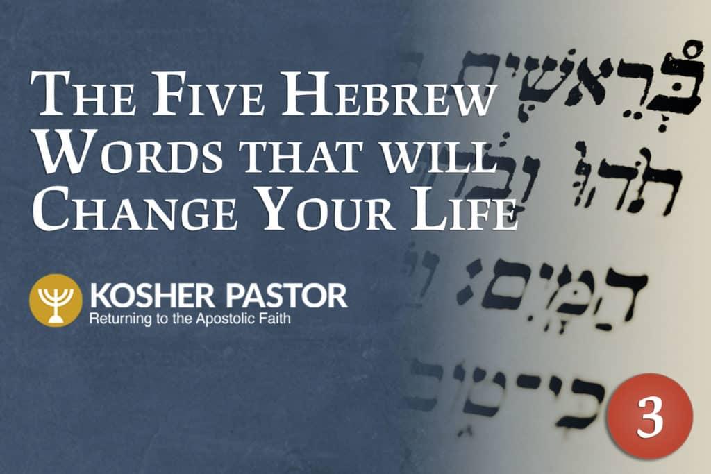 cover_kosher_pastor_ENG_module_3