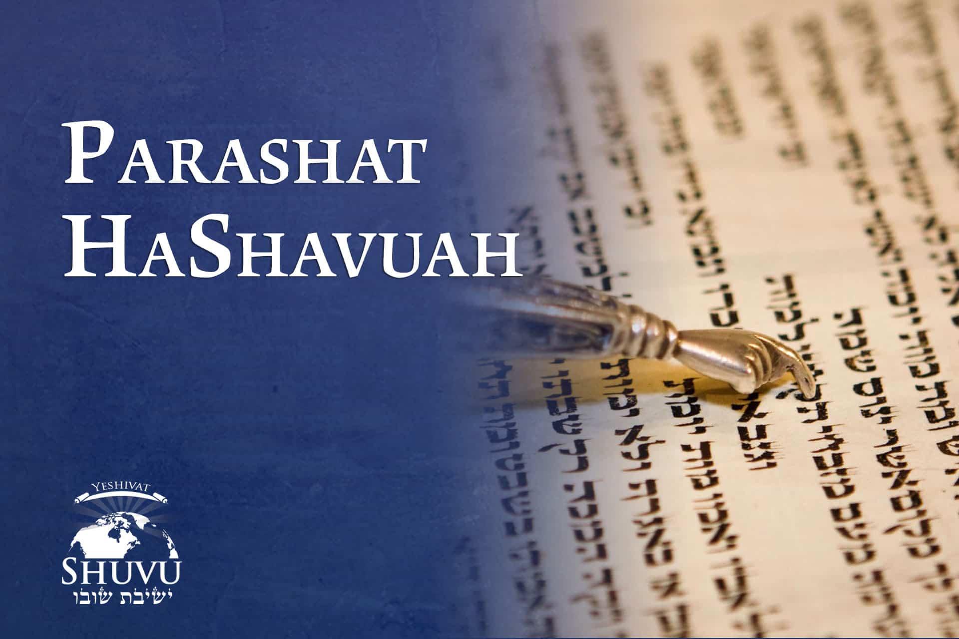 cover_yeshivat_shuvu_parashat_hashavuah_ENG
