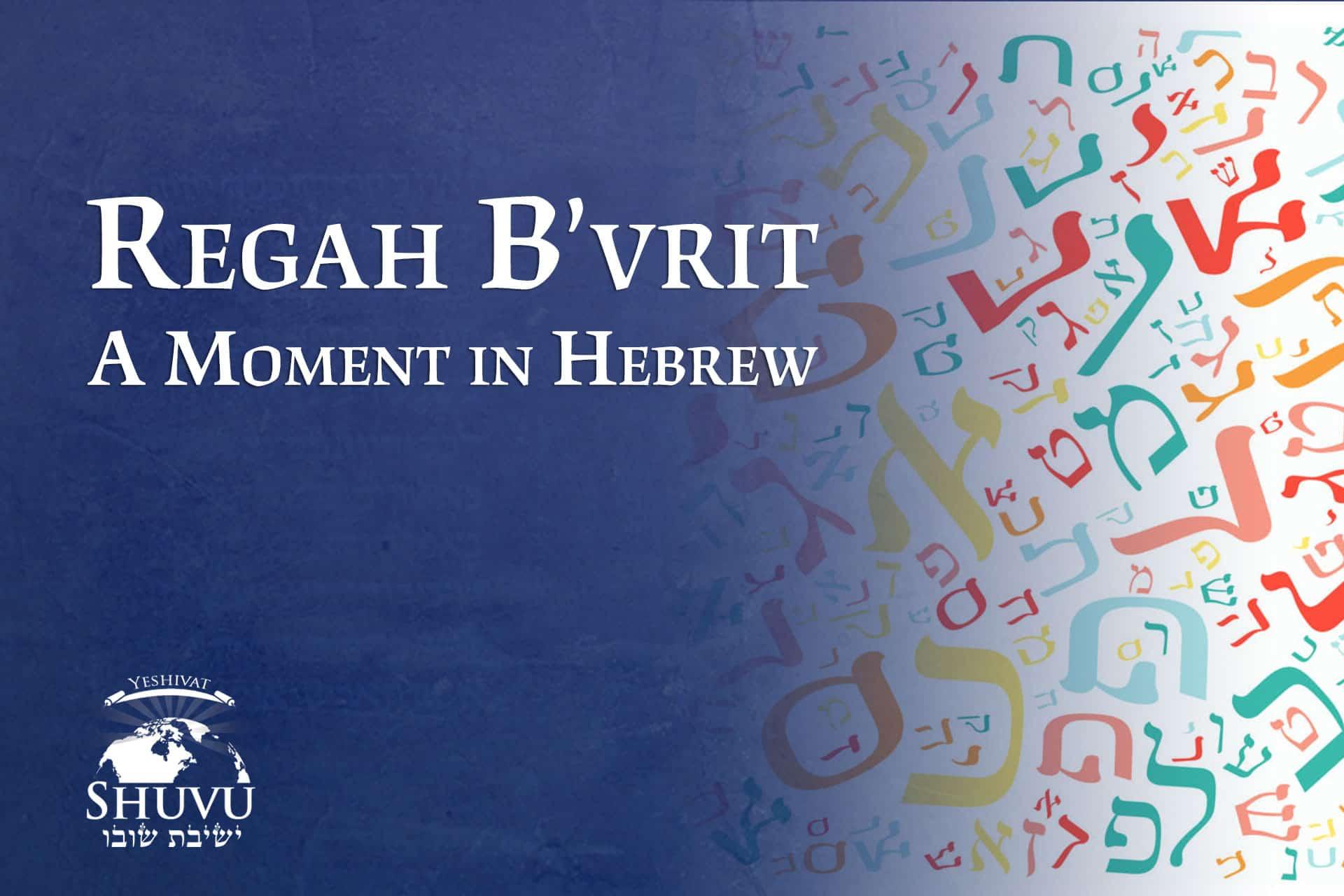cover_yeshivat_shuvu_regah_bivrit_ENG